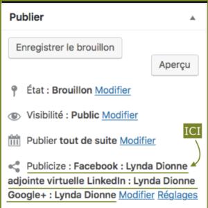 Capture d'écran sur WordPress où programmer vos articles et les expédier vers vos réseaux sociaux.